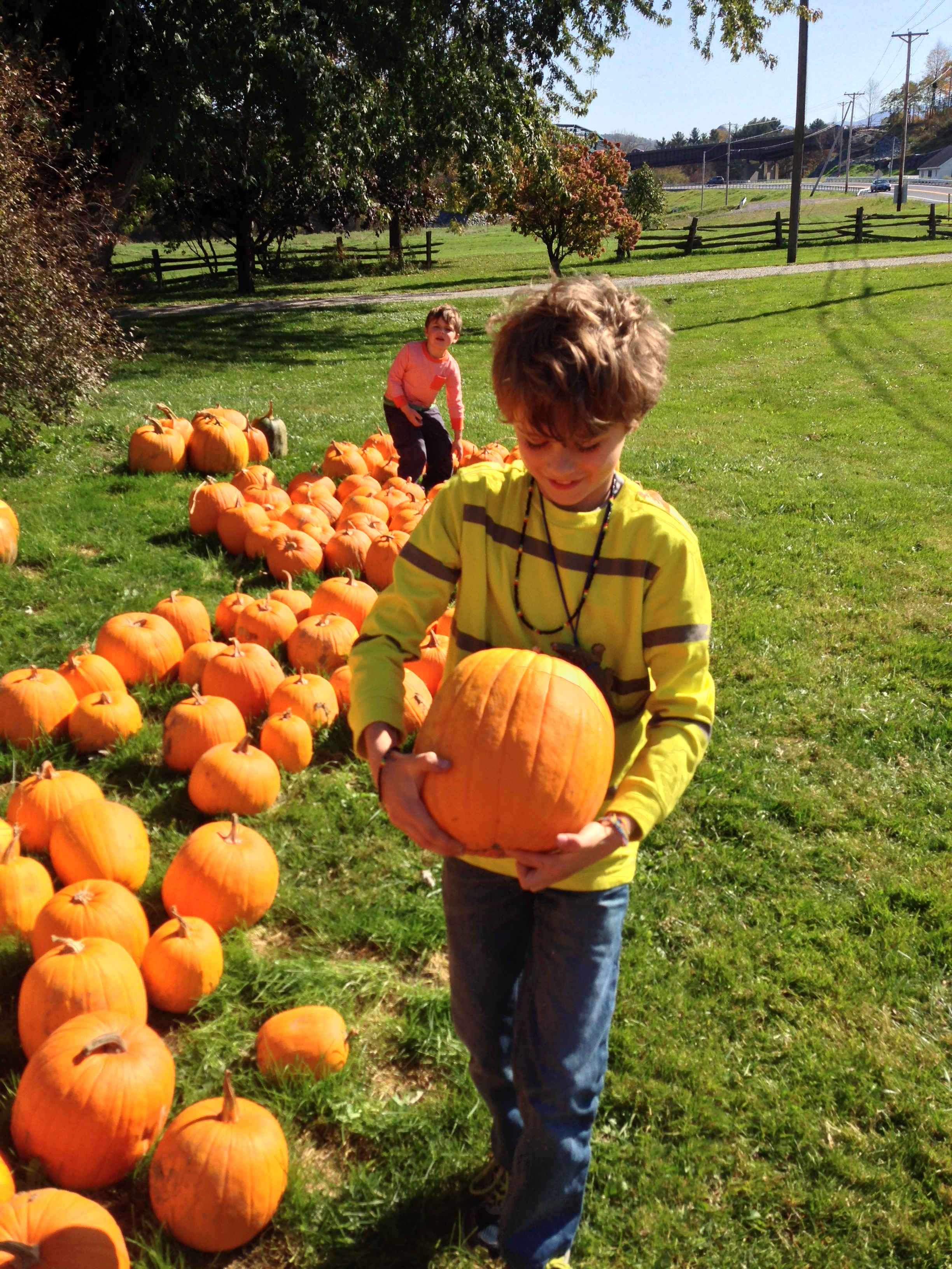 October_PumpkinPicking