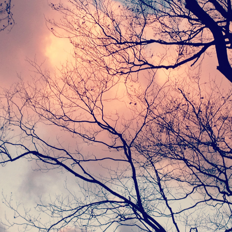 November_Sky