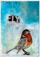 11-FlyRobinFly