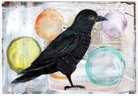 19-Crow Omen