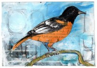 20 - Bright Oriole