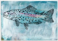 27- Rainbow Trout