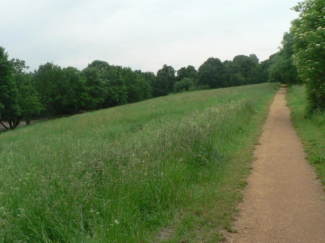 Alexandra_Palace_Park,_path_through_long_grass_-_geograph.org.uk_-_823105.jpg