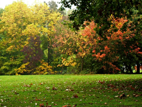 London-Parks-Ally-Pally-Autumn.jpg