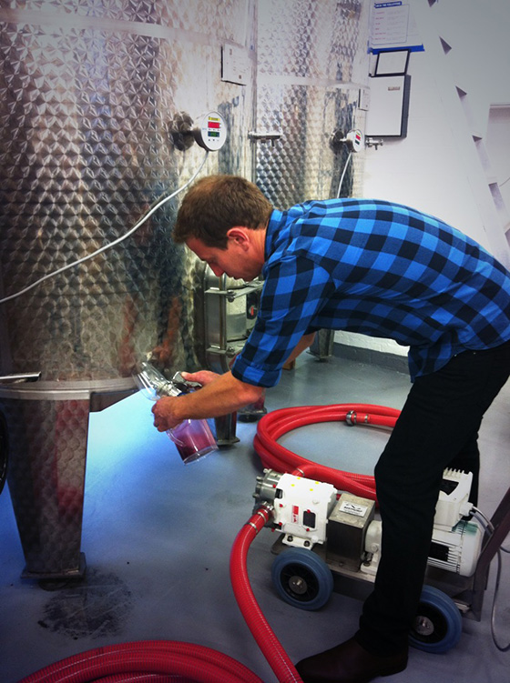 Gavin at Work in the Winery