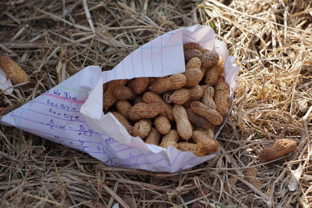 Peanuts Nepal.jpg