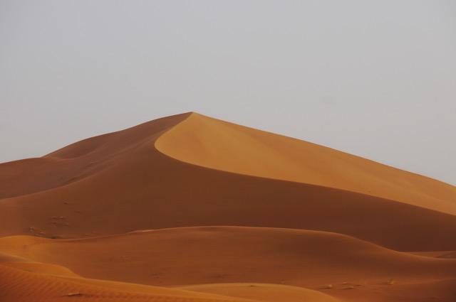 dune new.jpg