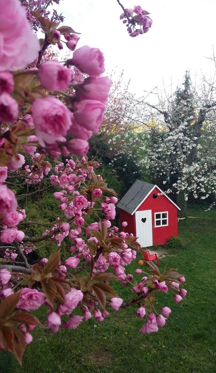 Die Ruhe des Frühlings.