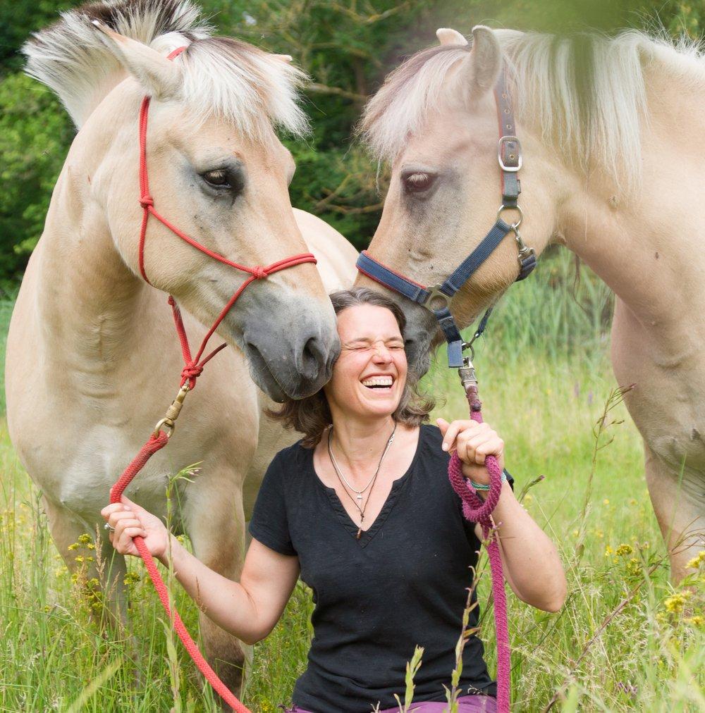 Wenn die Herzen sich berühren und meine Pferde mir ihre Weisheiten zuflüstern.