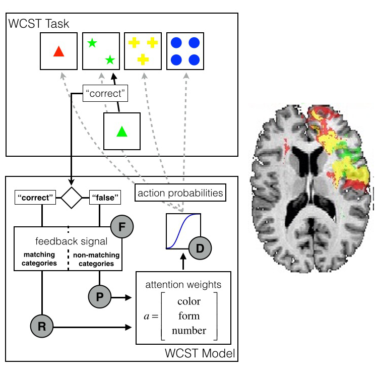 Lesion Mapping of Cognitive Functions — Gläscher Lab on