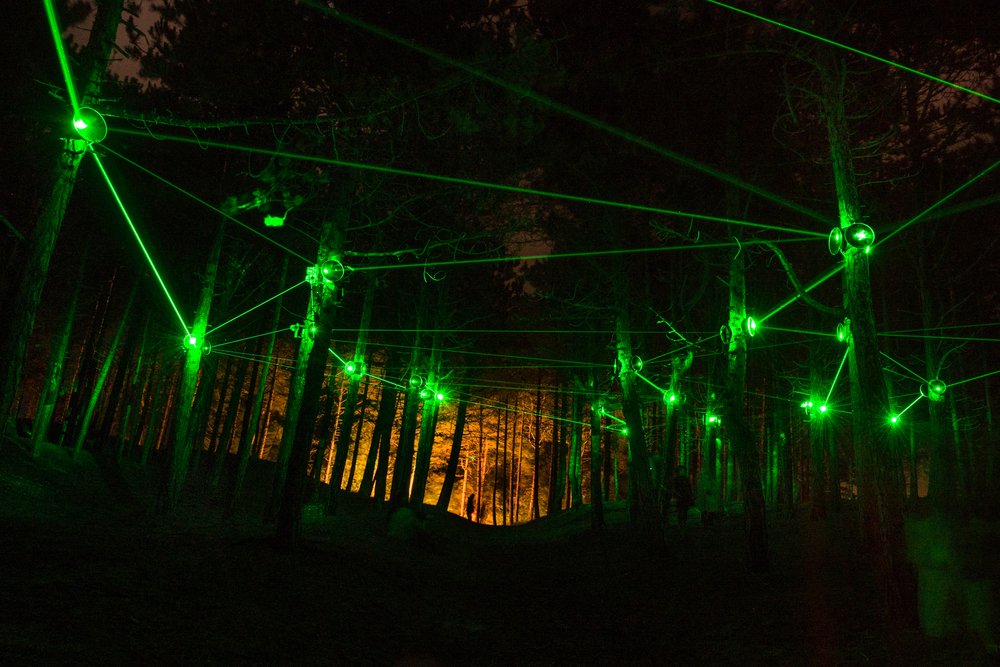 laser installation 'forest grid' .jpg