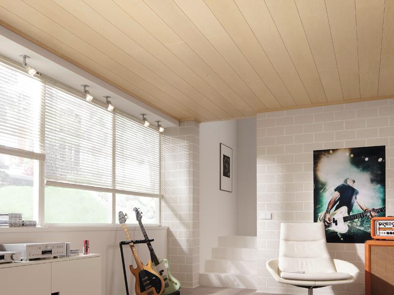 Meister_Madera_Ceiling_Roomset_2.jpg