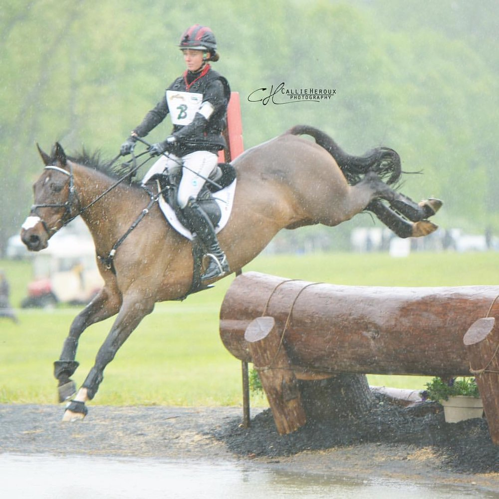 Cristiano Z at Jersey Fresh International CCI2* / Callie Heroux Photography