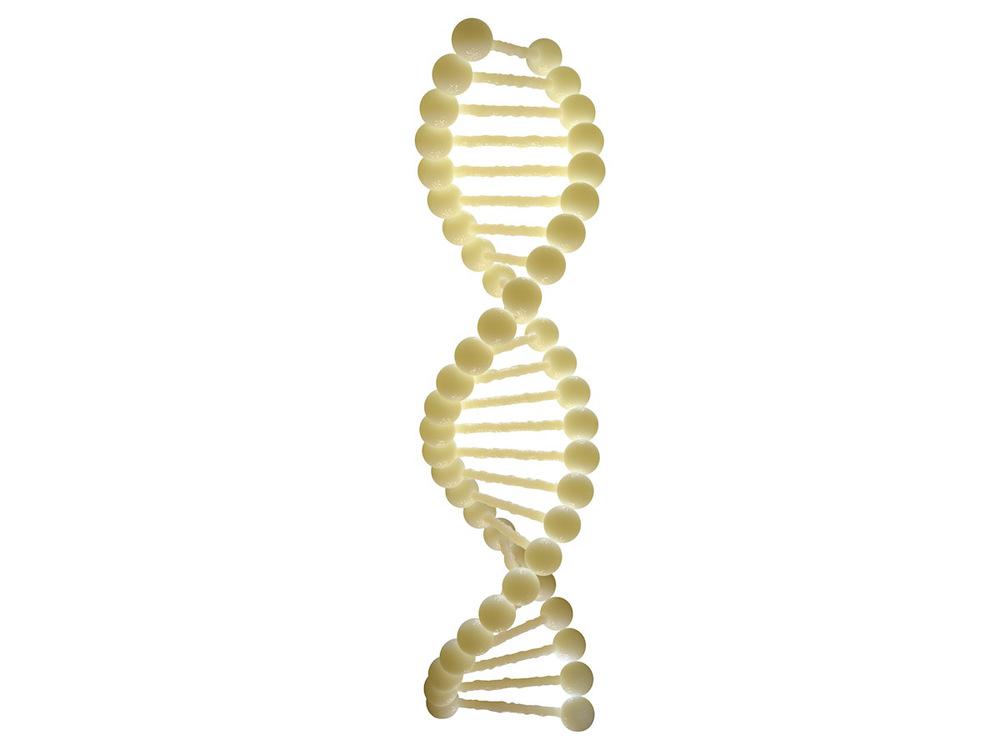 DNA end_1.JPG