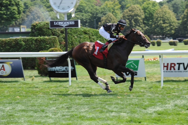 Sanctify - win at saratoga (July 2014)
