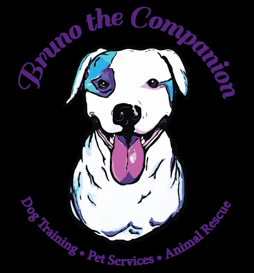 Bruno the companion dog training pet services animal rescue bruno the companion dog training pet services animal rescue businesses solutioingenieria Choice Image