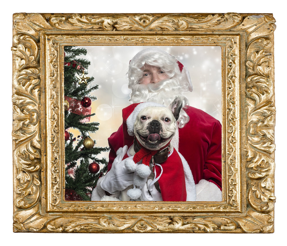 Dog with Santa in frameSM.jpg
