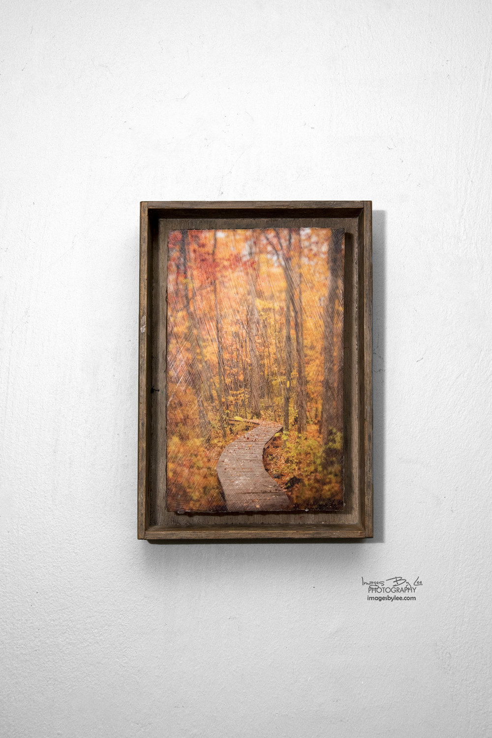 7 - Autumn Path FB.jpg