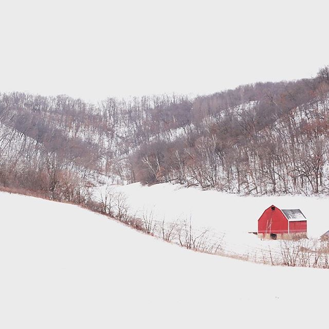 #fineart #fineartphotography #imagesbylee #photography #photographer #winter #everything_imaginable_ #redbarn #explorewisconsin #backroads #wisconsin  #snow #discoverwisconsin #moody_nature #ig_alls #artistry_flairs  #artistry_flair #splendid_shotz #masters_in_artistry #illustrious_art  #altered_nature #country_features #grammercollective #bns_nature #travel_wisconsin