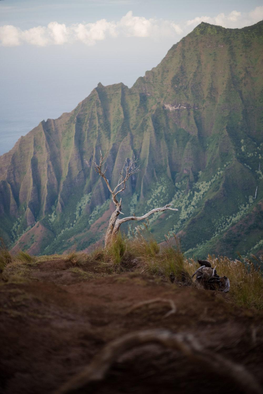 1611_Kauai_29.jpg