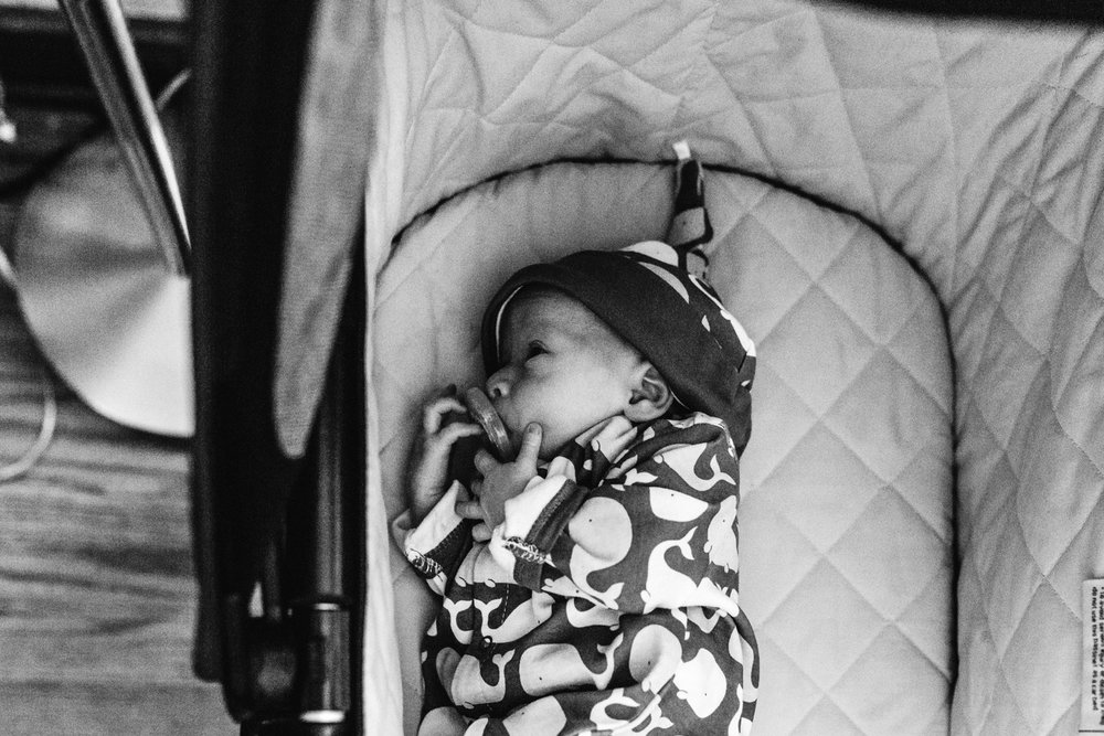 THE SKLAR FAMILY - MILWAUKEE, WI{Click image to view gallery}