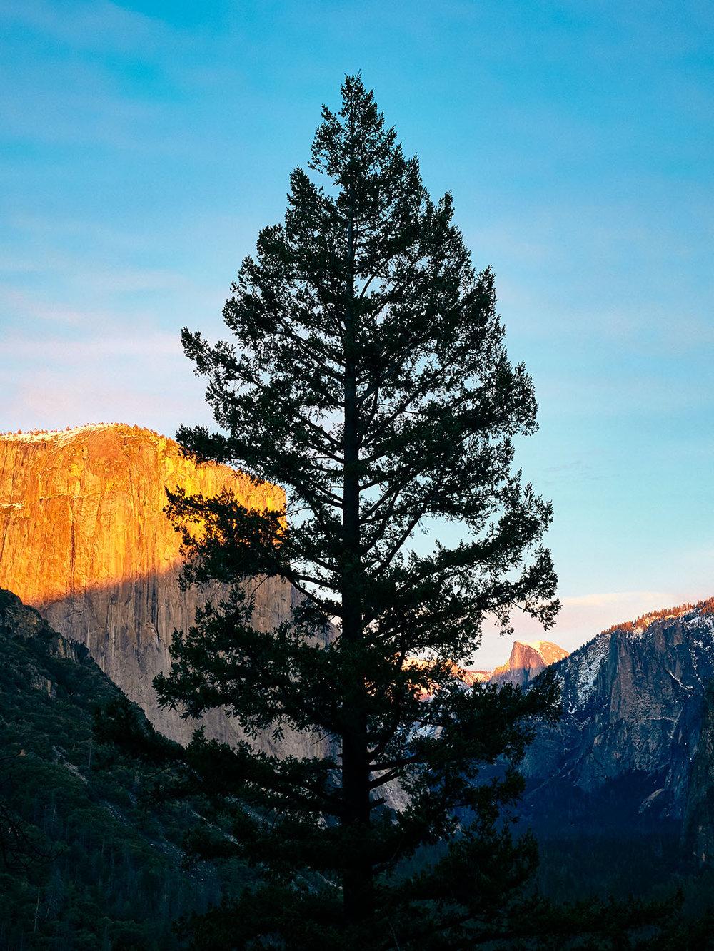 181214-SD-Yosemite-0561.jpg