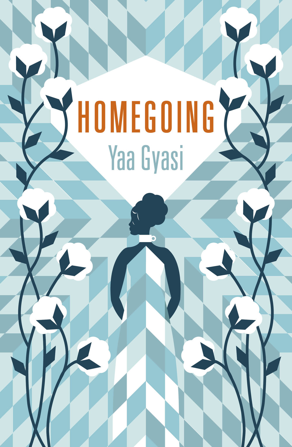 Homegoing 9.jpg