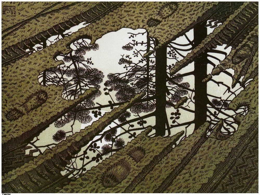 Puddle - M. C. Escher