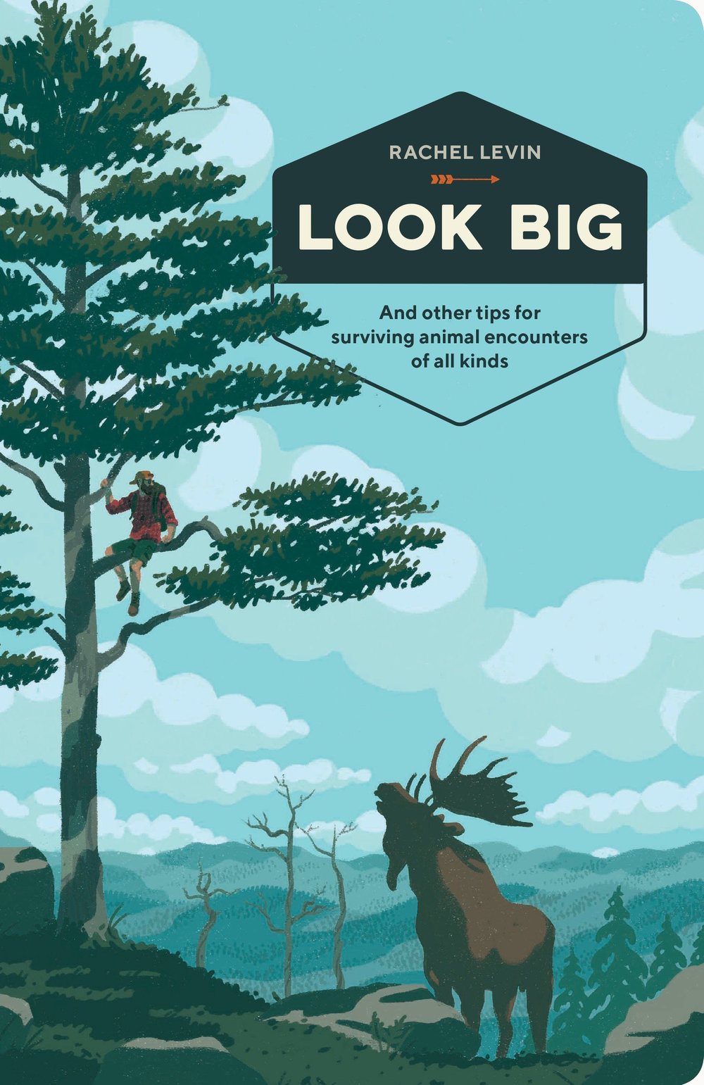 Illustrations for Look Big, Cover Design: Ashley Lima
