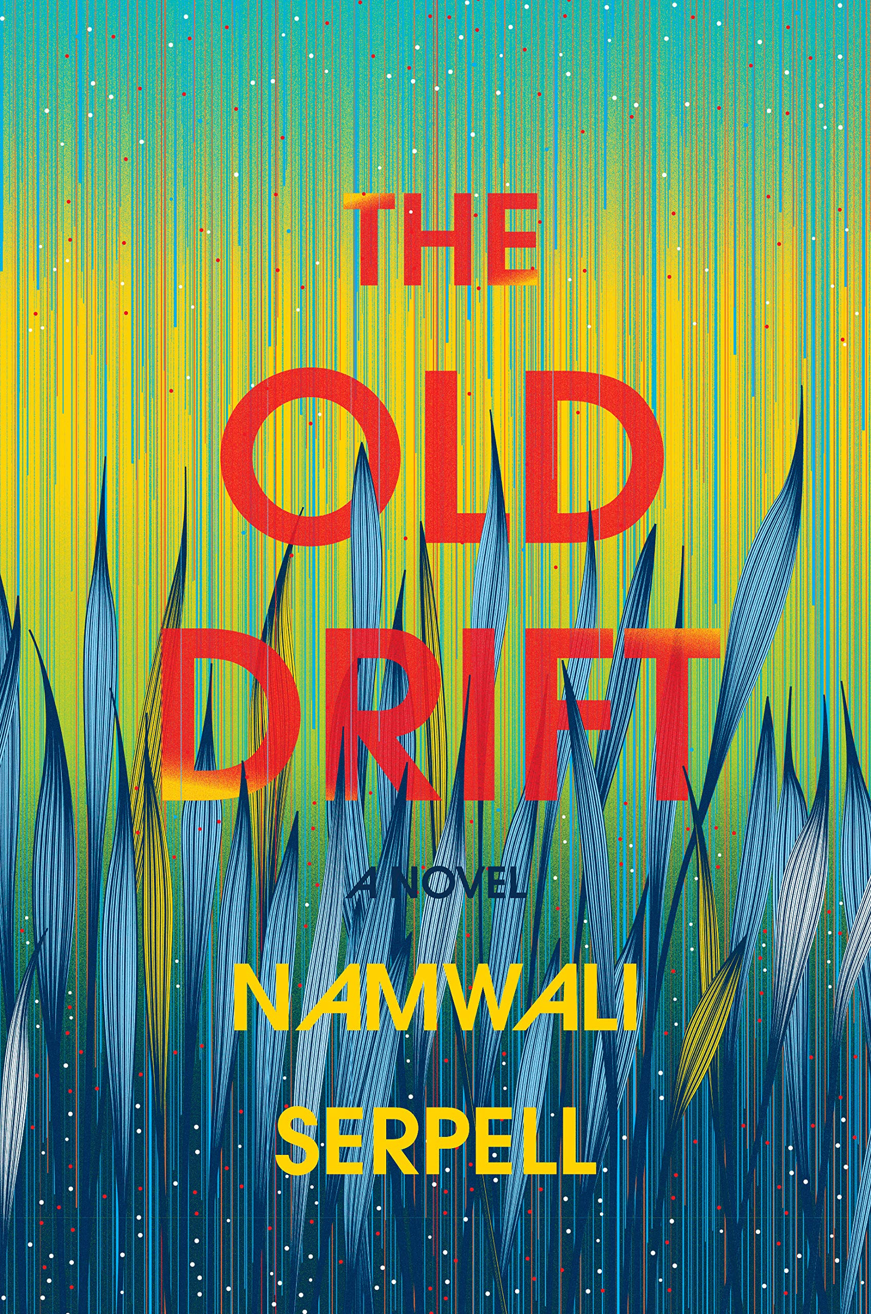 Image result for the old drift namwali serpell