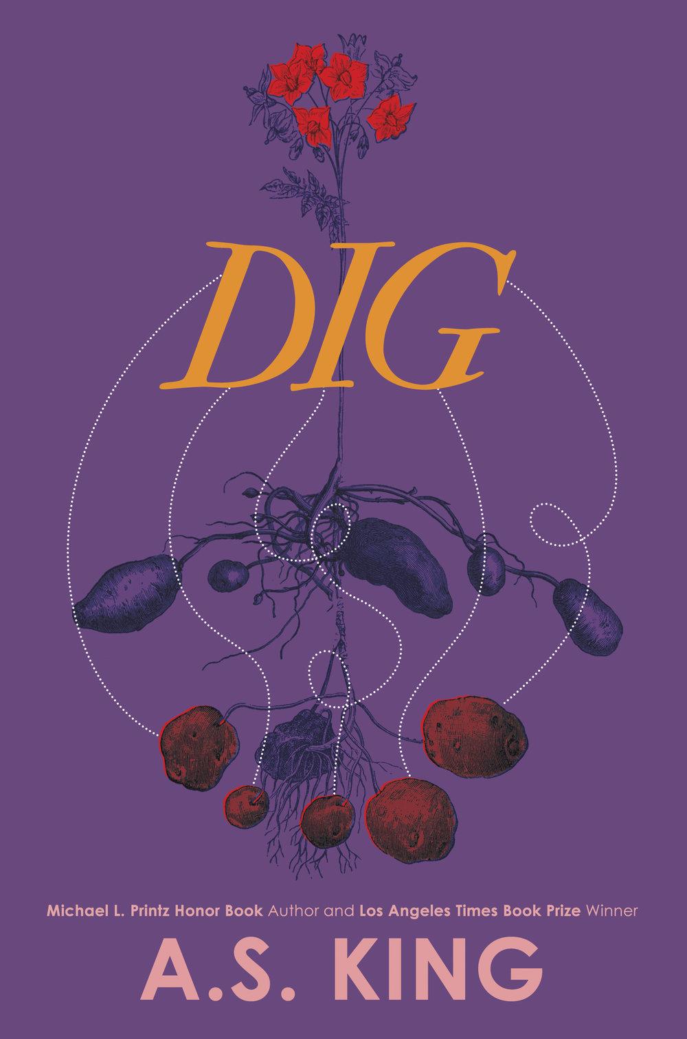 Dig_Comp1.jpg