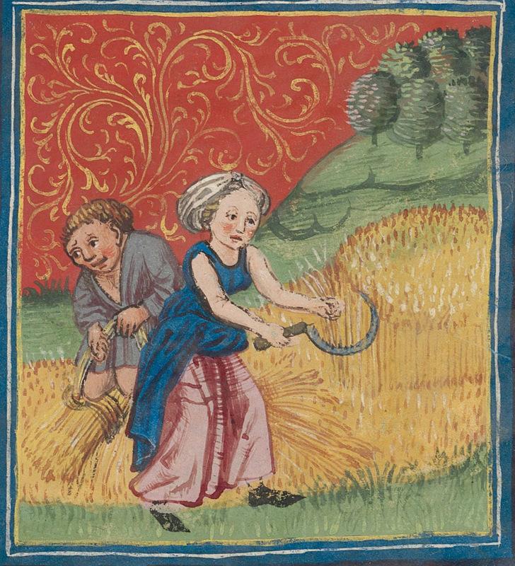 woman-harvest-9285.jpg