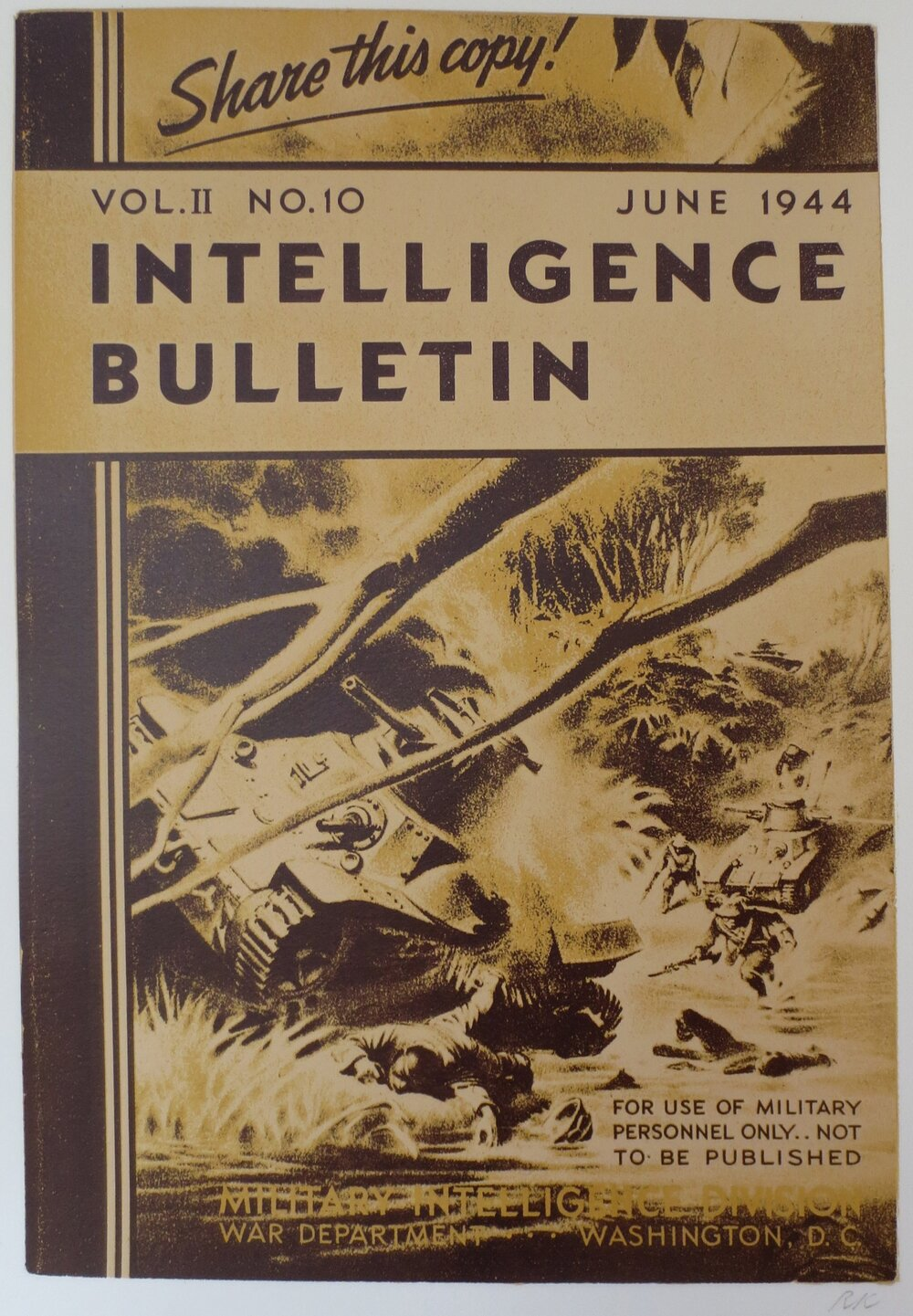 Intelligence Bulletin