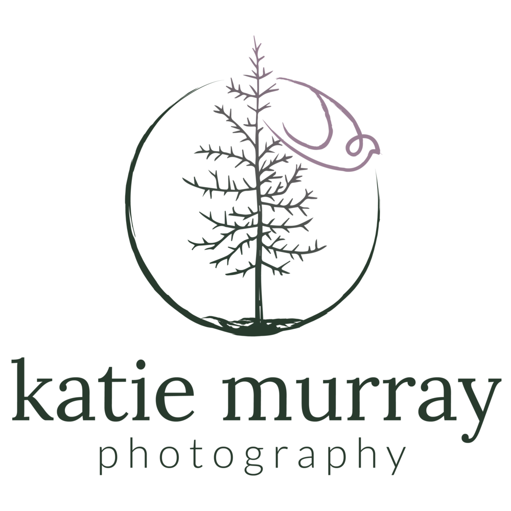 KatieMurray-MainLogoWName-Color.png