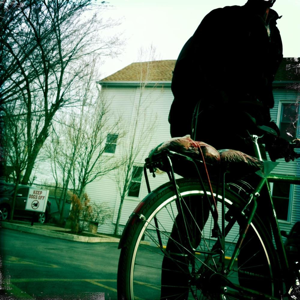 Photo by  Serena Lander .