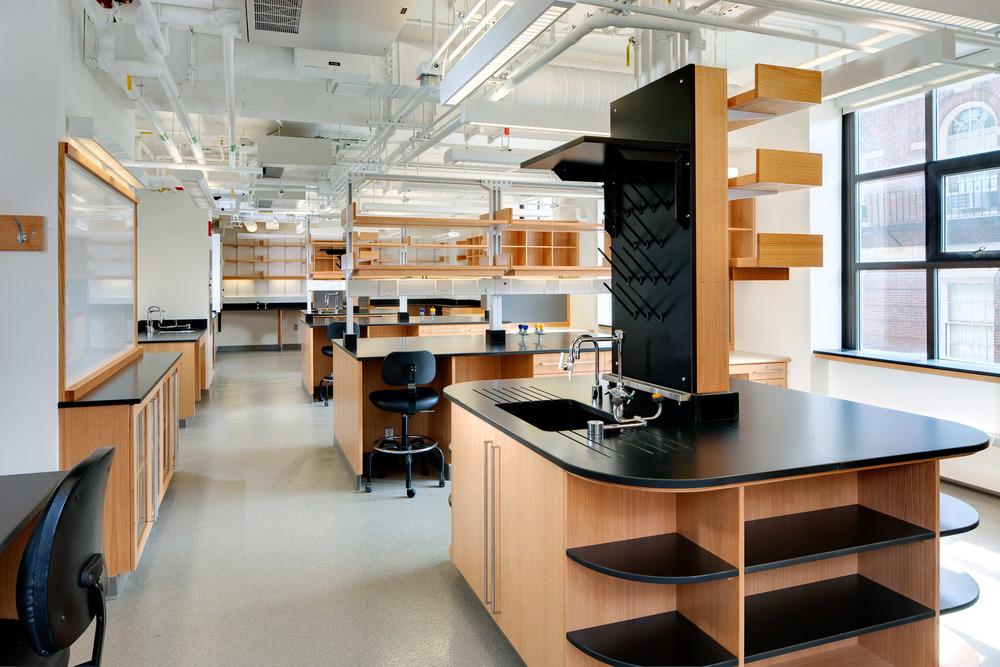 Harvard Kunes-Francis Lab 4.jpg