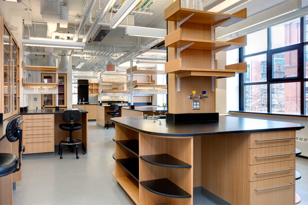 Harvard Kunes-Francis Lab.jpg