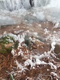 icesculpture - 3.jpg
