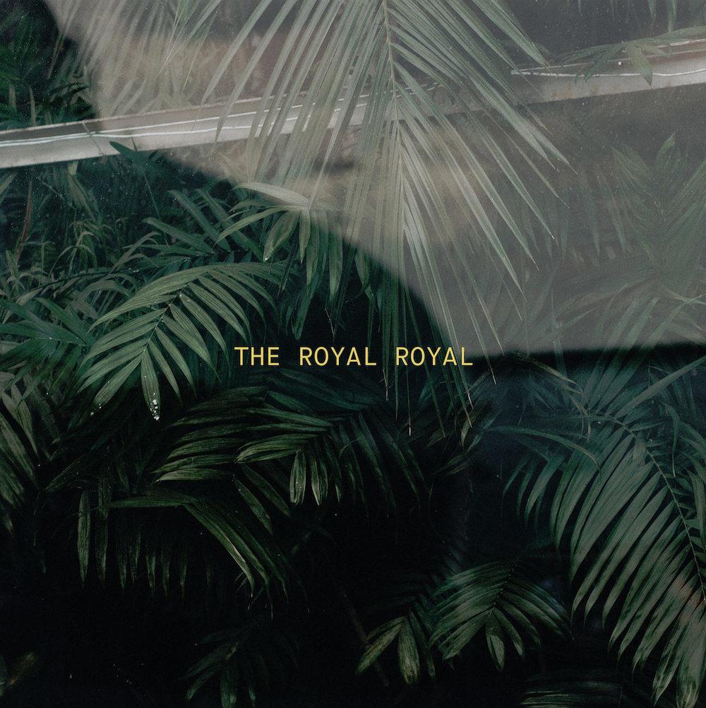4. Rococo – The Royal Royal - Oh boy, did they surprise me, and tease me all over social media with their palm branch vibes, and jungle vibes. When Neon Sign came out, it was immediately apparent that this was going to be one of my favourites. Like, Champion literally sounds Africa by Toto. Whether or not it was intentional, the 80's influence is definitely there and so well done. But then songs like I Found Love and Everything, make the album that much more solid and hearty. Favourite song to praise (and cry): Love 3