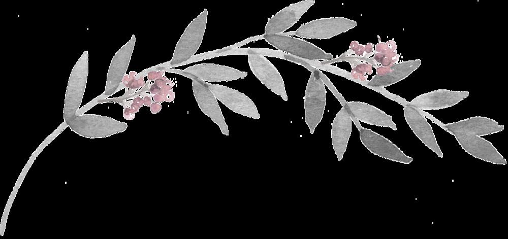 grey-branch 1.png