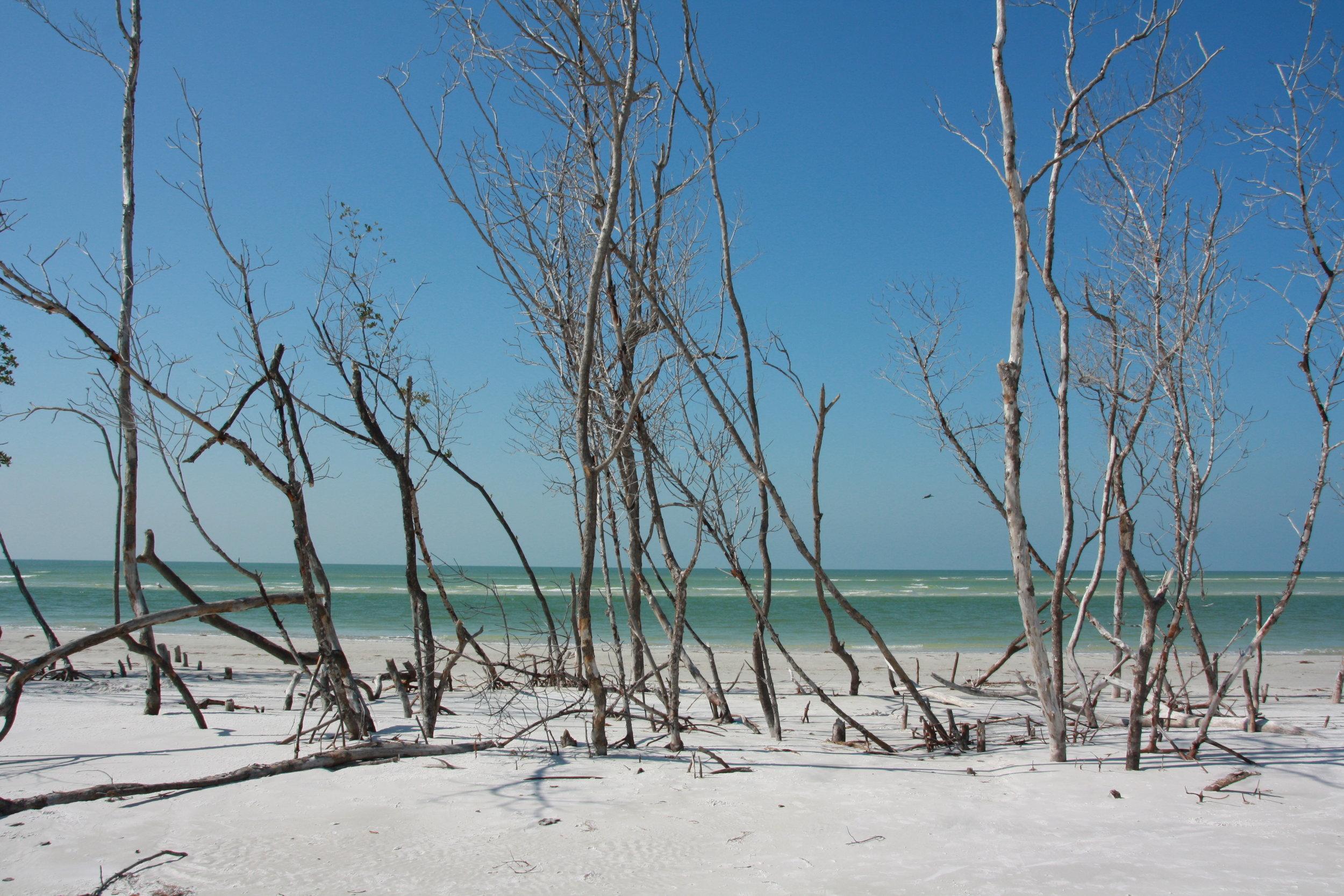 Fort De Soto County Park, Florida
