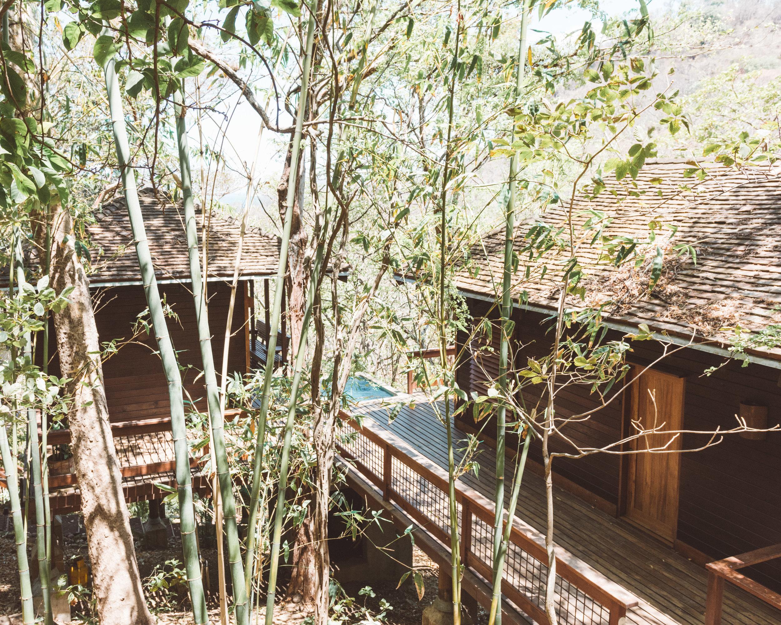 Treehouses of Aqua Wellness Resort