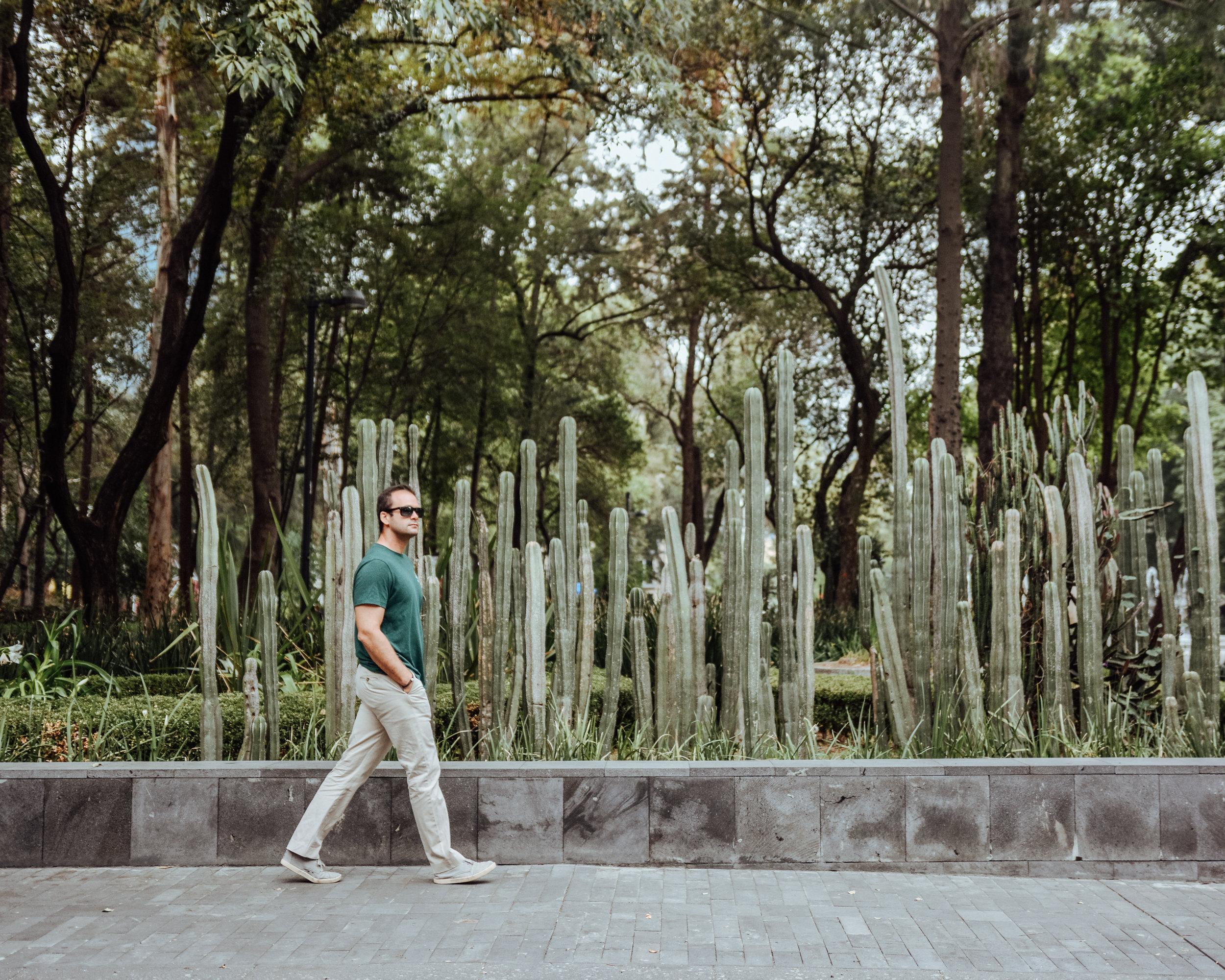 Walking around Mexico City