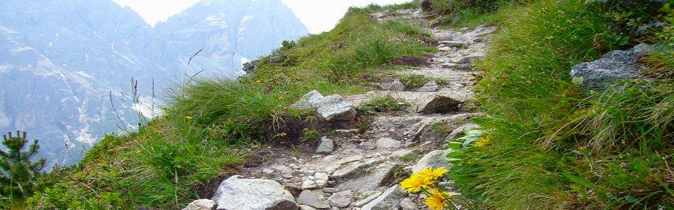 Mountain-Path-a.jpg