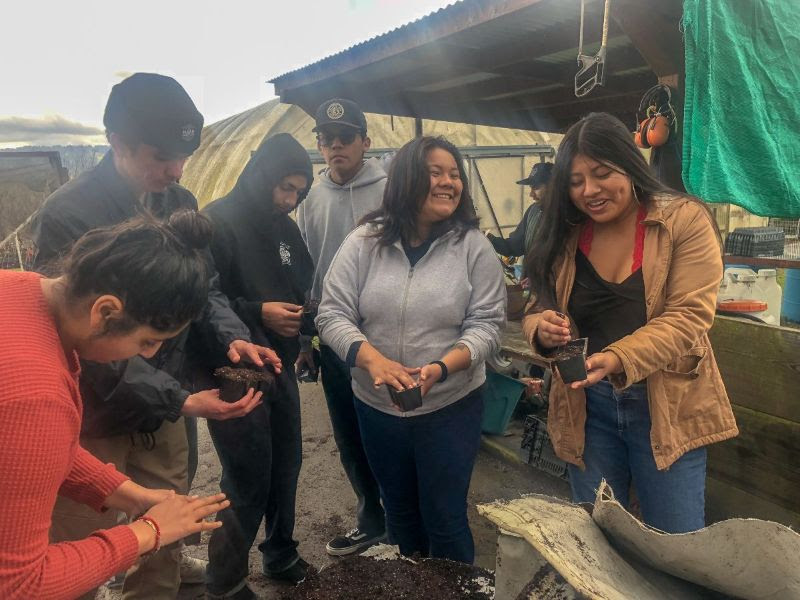 The FoodWhat Crew sowing sunflower seeds.