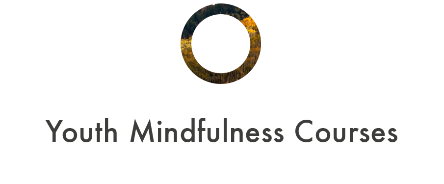 youth mindfulness utah