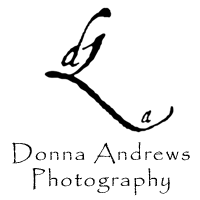 Donna Andrews Photography