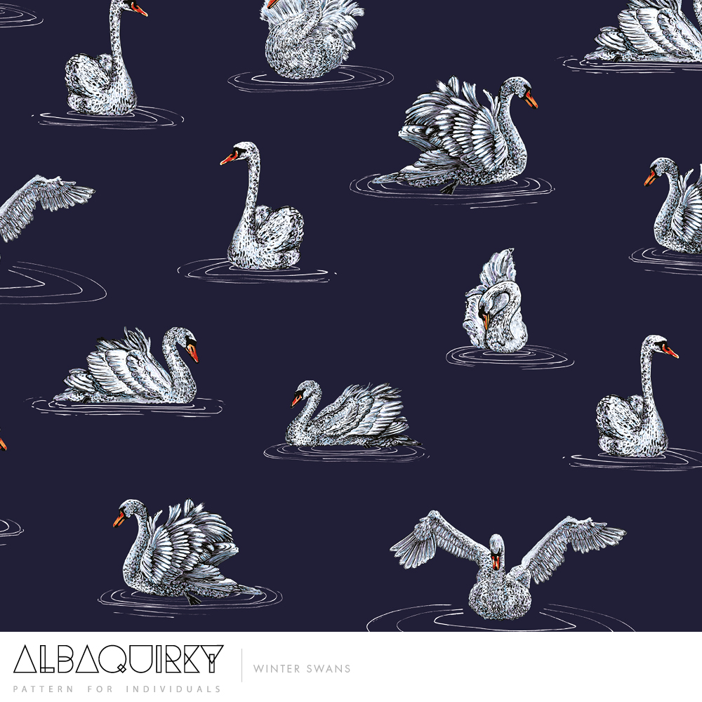 albaquirky_winter_swans.jpg