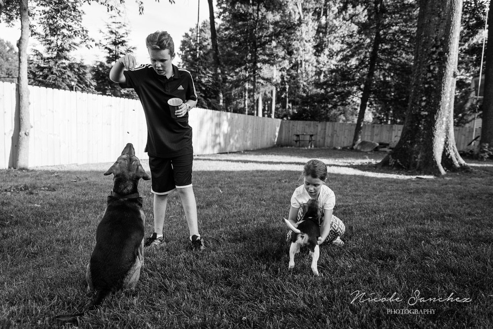 Family_Documentary_Backyard_Dogs_6.jpg