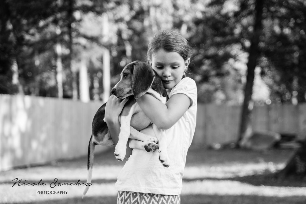 Girl hugging puppy | Alexandria, VA Family Photographer